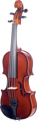 Violin Outfit Allegro 116