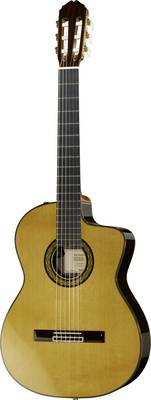 Takamine TH5C B-Stock