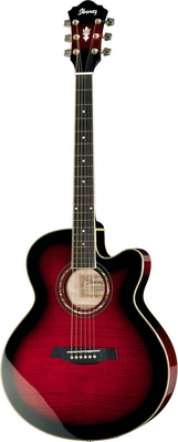 Ibanez AEL20E-TCS