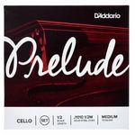 Daddario Prelude J1010-1/2M