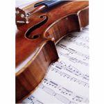 Vienna World Postcard Violin