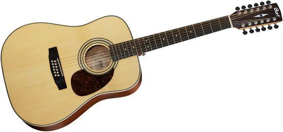 Leo Kottke 12 String Blues