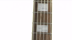 Harley Benton HBL 500 E-Gitarre