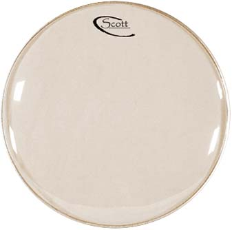"Scott 10"" Banjo Head White"