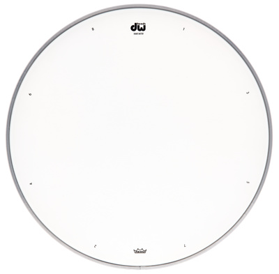 dw 13 coated snare drum head thomann united states. Black Bedroom Furniture Sets. Home Design Ideas