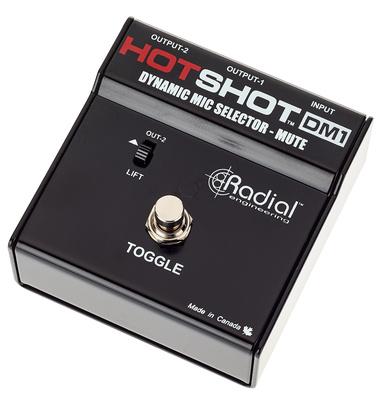 Radial Engineering HotShot DM1 B-Stock
