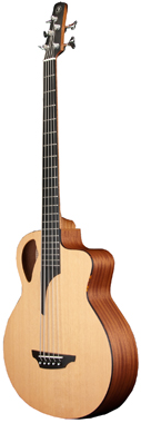 Furch B61-5 CM Acoustic Bass