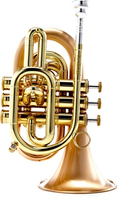 Carol Brass CPT-3000-GLS-Bb-SLB B-Stock