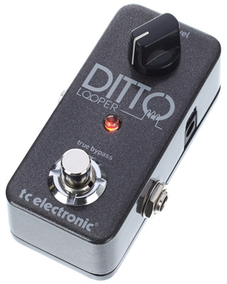 TC Electronic Ditto B-Stock