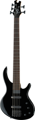 Epiphone Toby Deluxe-V Bass EB