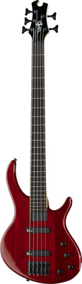 Epiphone Toby Deluxe-V Bass TR