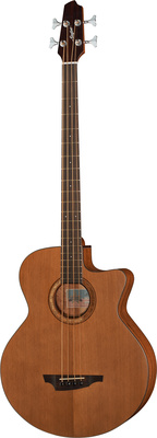 Stanford Big-Sur 4 fretted
