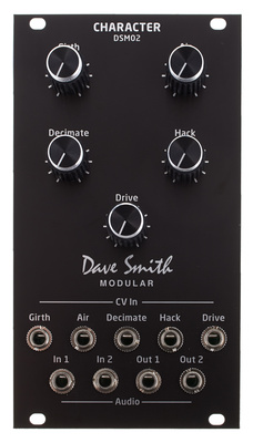 Dave Smith Instruments DSM02 Character Module B-Stock