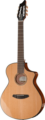 Breedlove Pursuit Nylon B-Stock