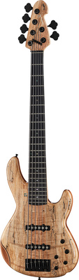 Sandberg Panther 6 TT spalted maple