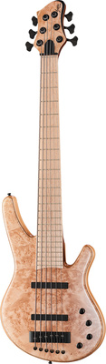 Franz Bassguitars Wega 6 Maple Burl