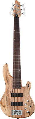 Clover Xpression 6 Spalted Maple
