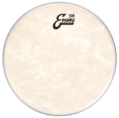 """Evans 12"""" Calftone Tom"""