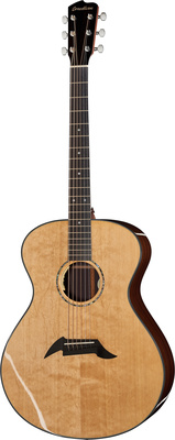 Breedlove CO20BCRe Thomann Special EDT