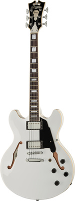 DAngelico Premier DC White