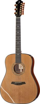 Furch D 23-CR 9-String w/LR Baggs