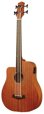 Gold Tone Micro Bass 25 w/Bag LH
