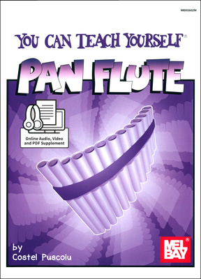 Mel Bay You Can Teach Yourself Pan