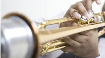 Brass Mutes